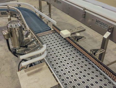 activated roller belt accumulator